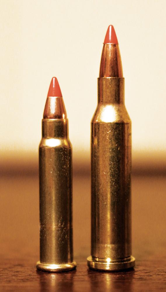 17 HMR vs 17 WSM - 2