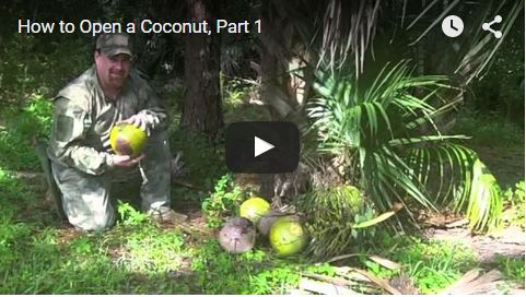 2015-08-17 15_06_27-Video_ How to Open a Coconut _ Gun Digest