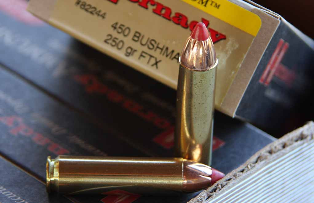 The .450, as designed, was intended from the start to have the Hornady FTX bullet as the projectile. And there is nothing at all wrong with that. This is a deer-hammering combination of bullet, cartridge and rifle.