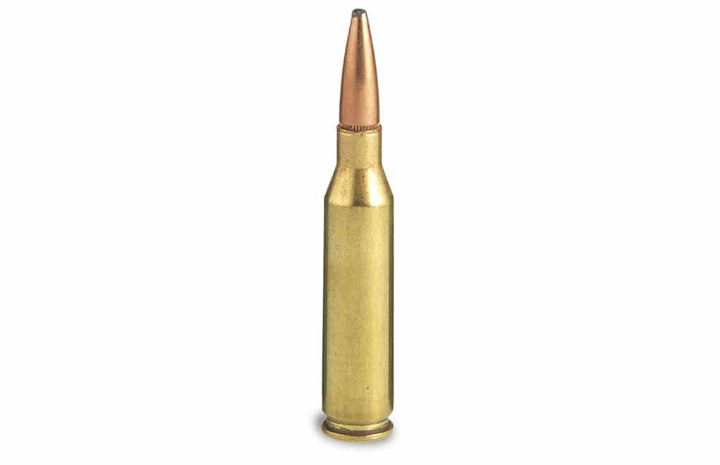 7mm-08 Remington Cartridge