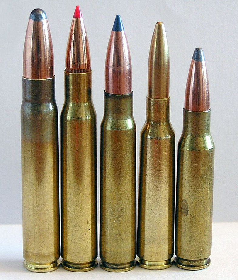 The 9.3x62 Mauser (left) compared to a number of popular rifle cartridges. Next in line from the left: .30-06 Springfield, 8x57 IS, 6.5x55, .308 Winchester.