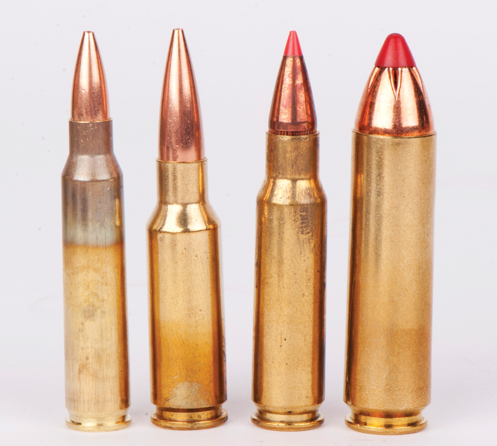 These four popular AR-15 cartridges show the versatility the platform offers. From left to right - .223 Remington, 6.5 Grendel, 6.8 Remington SPC and .450 Bushmaster.
