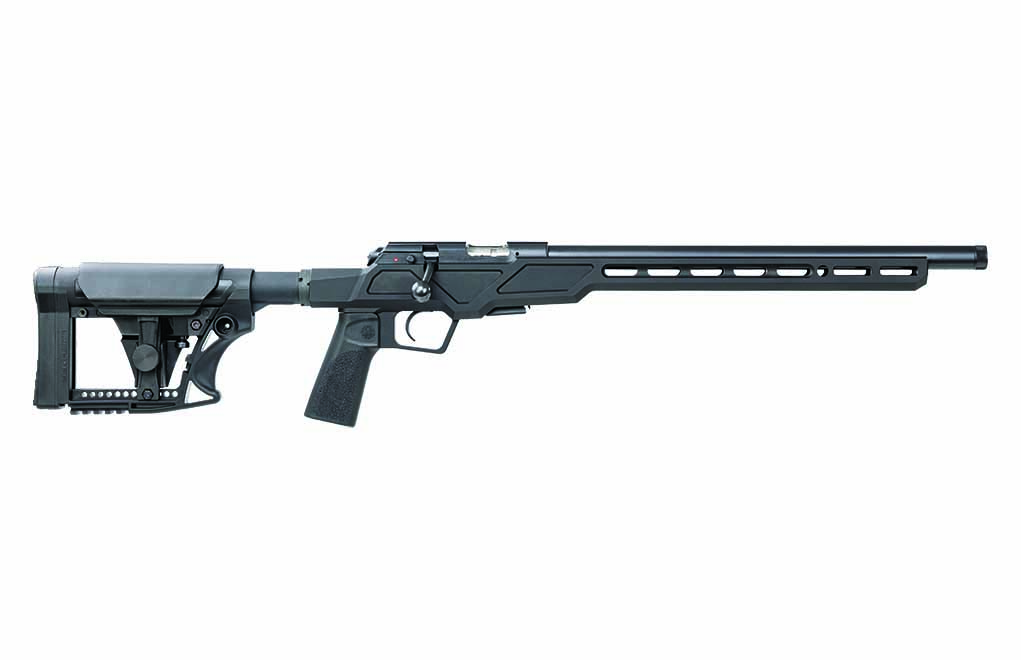 Precision 22 Rifle CZ
