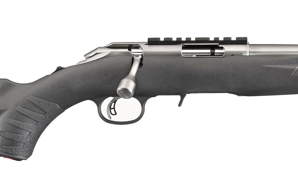 stainless-ruger